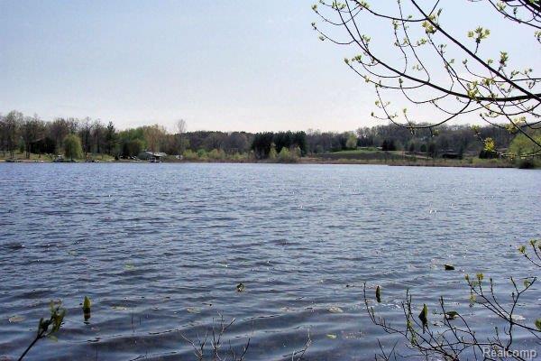 LOT 19 Oak Shore, Green Oak Twp, MI 48178 (#219021876) :: The Buckley Jolley Real Estate Team