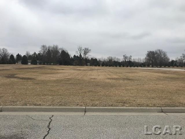 Silver Creek Dr Lot 8, Morenci, MI 49256 (MLS #56031373944) :: The Toth Team