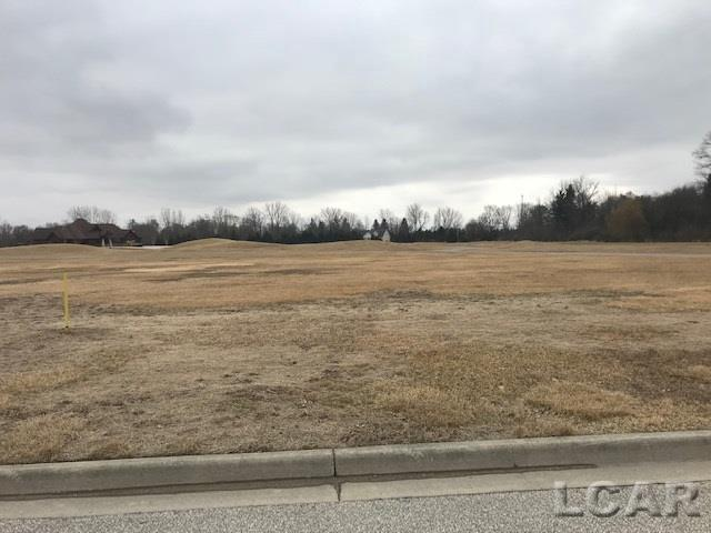 Whitehouse Ct Lot 13, Morenci, MI 49256 (#56031373956) :: Team Sanford