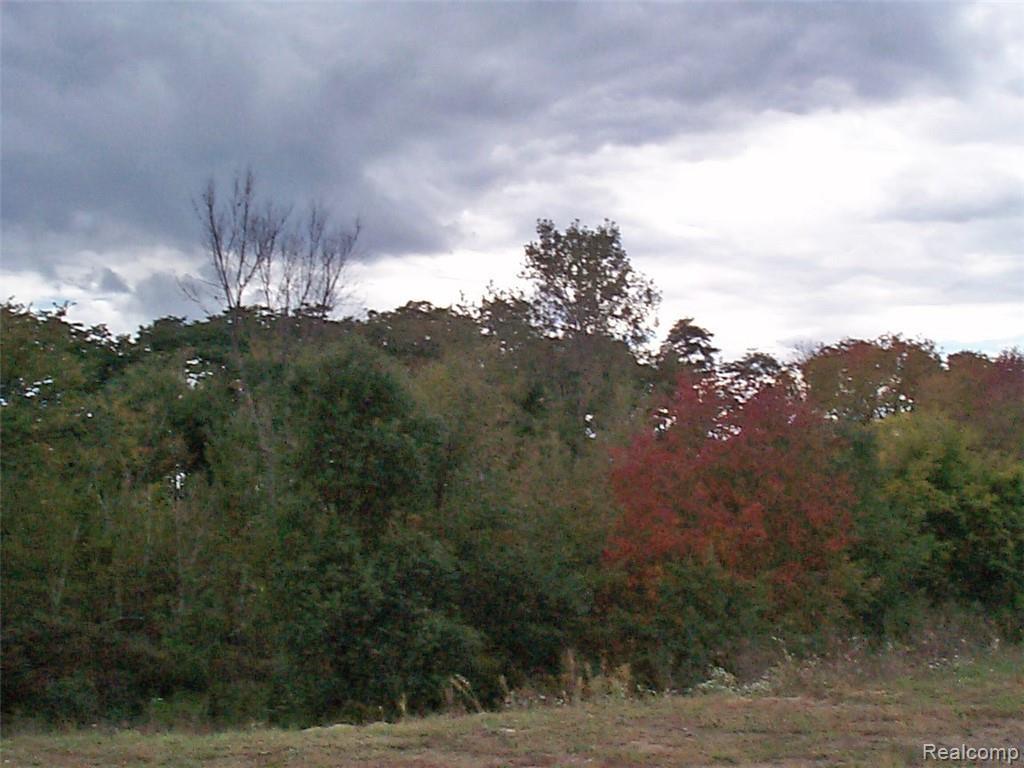 5334 Edgewood Shores Drive - Photo 1