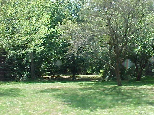 0000 Valley View Drive, Southfield, MI 48033 (#219035399) :: RE/MAX Classic