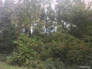 00 Bentley Road, Burnside Twp, MI 48416 (#219039014) :: RE/MAX Nexus