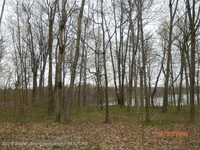 0 Lakeside Drive, Fulton Twp, MI 48871 (#630000236000) :: RE/MAX Nexus