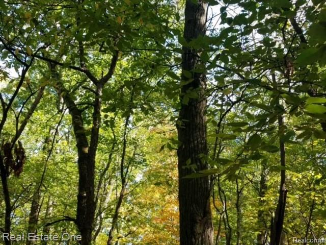 VL Woodsman Drive, Groveland Twp, MI 48462 (#219041575) :: RE/MAX Nexus