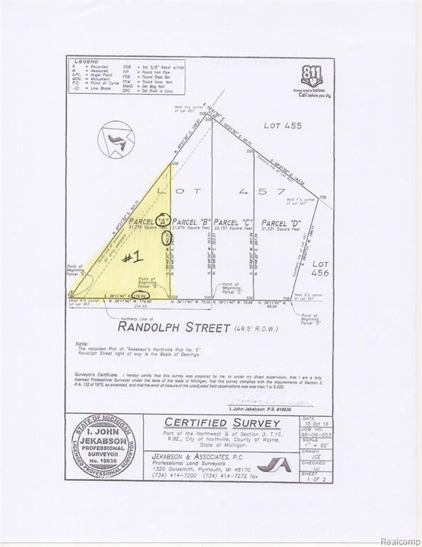 A Randolph Street, Northville, MI 48167 (#219044547) :: Team Sanford