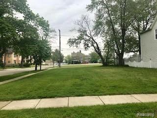1404 06TH Street, Port Huron, MI 48060 (#219048631) :: The Buckley Jolley Real Estate Team