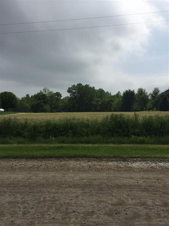N Stony Creek, Frenchtown Twp, MI 48166 (#57031381980) :: The Mulvihill Group