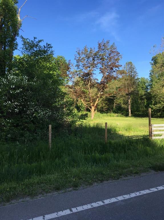 13671 Rawsonville Road, Sumpter Twp, MI 48111 (#543265944) :: The Buckley Jolley Real Estate Team
