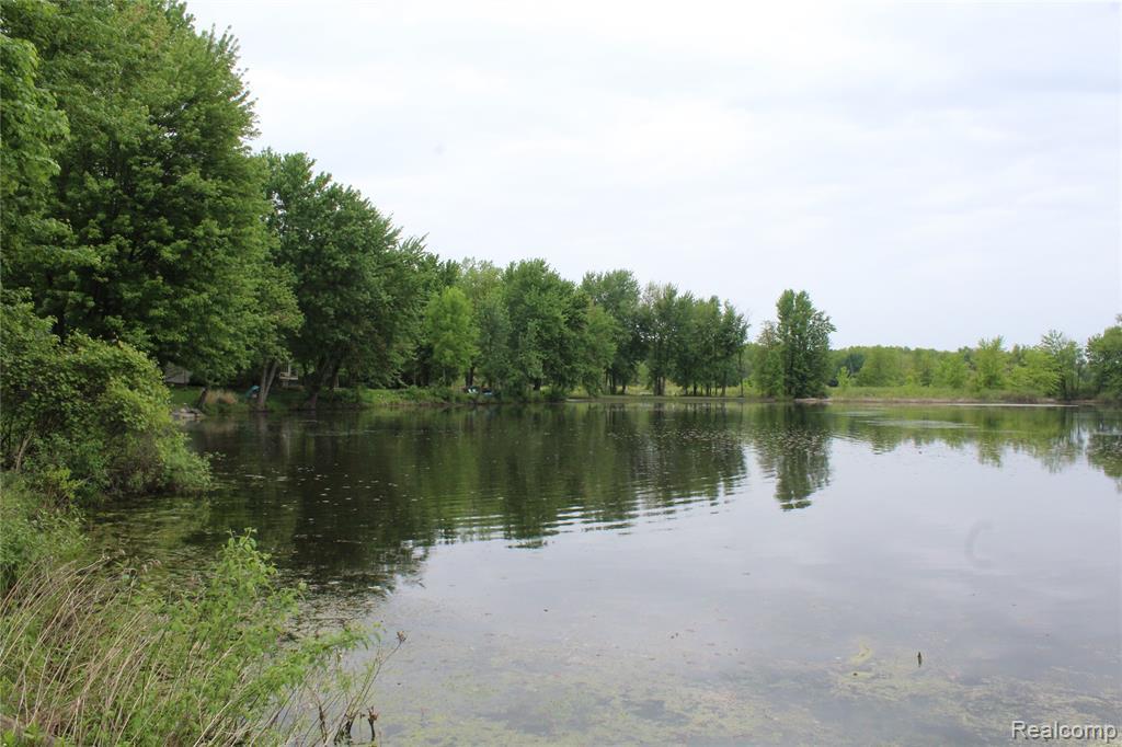 9058 Pineview Lake Crt - Photo 1