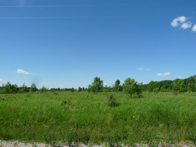 0 Fisher, Fremont Twp, MI 48097 (#58031385899) :: The Mulvihill Group