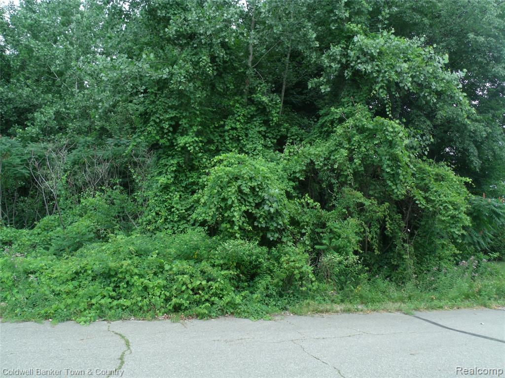 11163 High Timbers - Photo 1