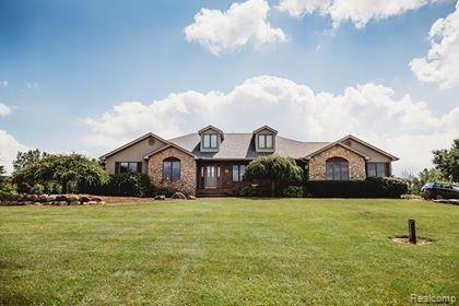 1470 Brown City Road, Goodland Twp, MI 48444 (#219067122) :: Alan Brown Group