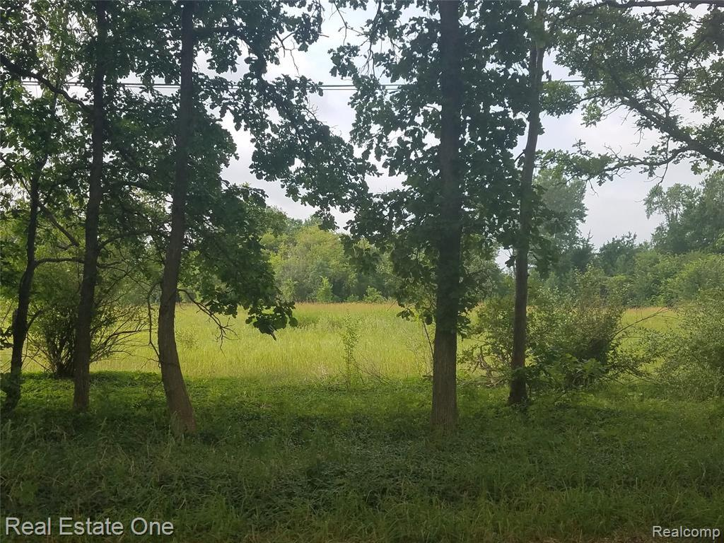 Vacant 12 Mile Road - Photo 1