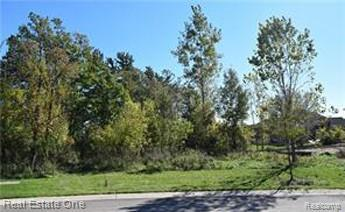 29930 Brush Park Court, Novi, MI 48377 (#219071965) :: The Buckley Jolley Real Estate Team