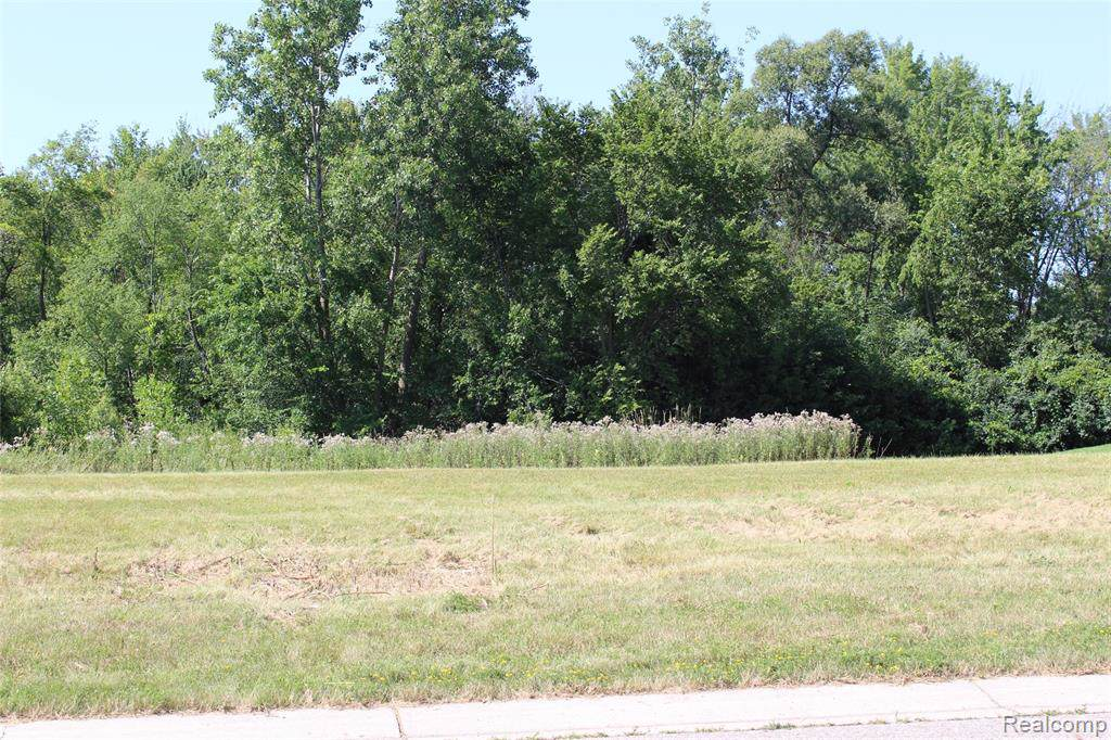 2252 Lake Ridge Drive - Photo 1