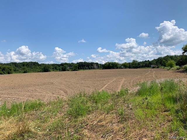 0 Hamill Road, Forest Twp, MI 48463 (#219080537) :: The Buckley Jolley Real Estate Team