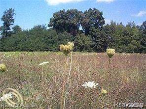 lot 32 Outback Trail, Putnam Twp, MI 48169 (MLS #219081557) :: The John Wentworth Group