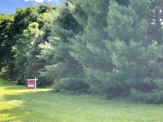 0 Oak Meadows Drive, Genoa Twp, MI 48843 (#219081736) :: The Alex Nugent Team | Real Estate One
