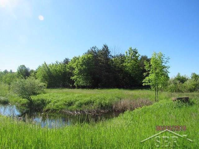 Lakefield, Swan Creek Twp, MI 48655 (#61031390905) :: Team Sanford