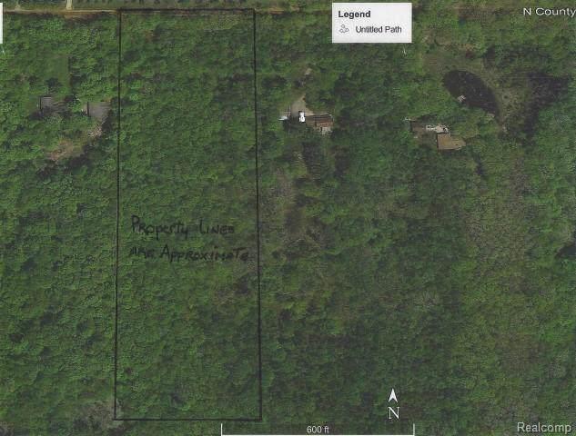 0 Willard Road, Forest Twp, MI 48464 (MLS #219085954) :: The Toth Team
