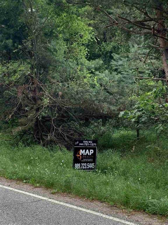Beardslee Road, Perry Twp, MI 48872 (#5031391772) :: GK Real Estate Team