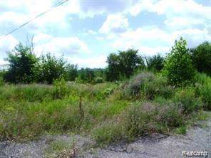 1322 Newberry, Highland Twp, MI 48380 (#219092020) :: The Buckley Jolley Real Estate Team