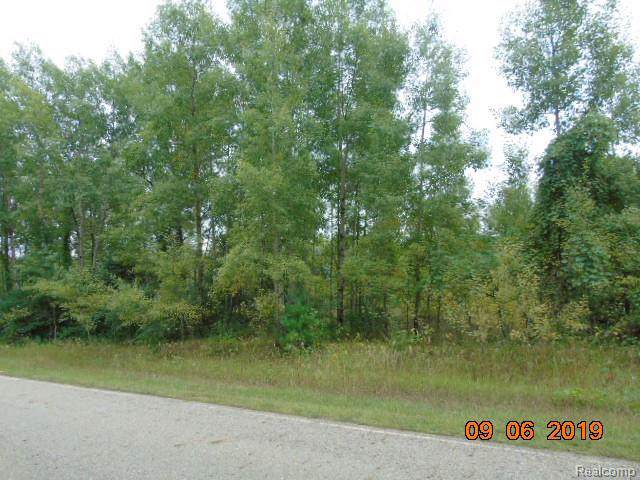 parcel I Blackmore Road, Fremont Twp, MI 48744 (#219093491) :: The Buckley Jolley Real Estate Team