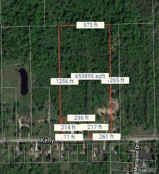 002 Kelly Road, Mt. Morris Twp, MI 48433 (#219095420) :: The Buckley Jolley Real Estate Team