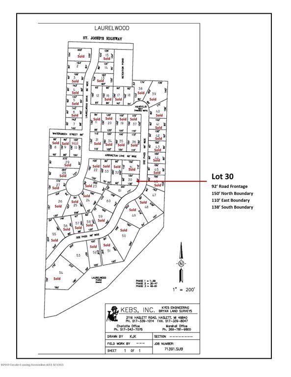 Lot 30 Doe Pass, Delta Twp, MI 48917 (MLS #630000241055) :: The Toth Team