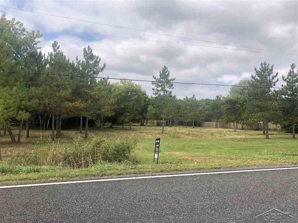 Smiths Crossings Rd - Photo 1
