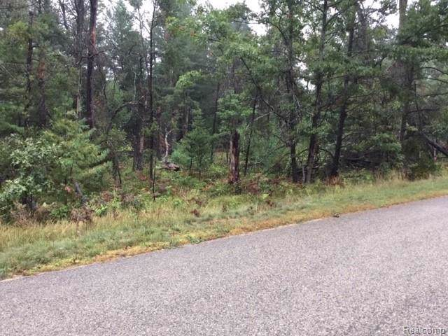lot 122 Northland Dr, Denton Twp, MI 48651 (#219099166) :: RE/MAX Nexus