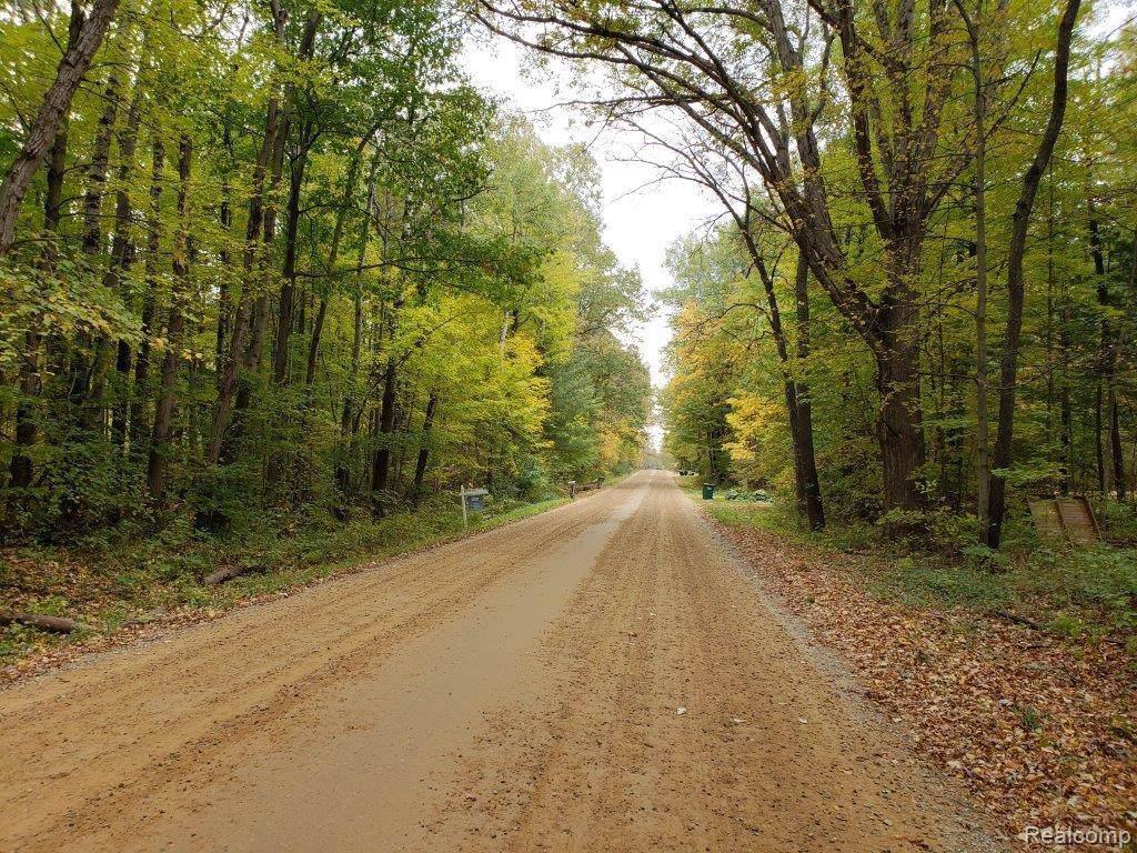 VL Flint River Road - Photo 1