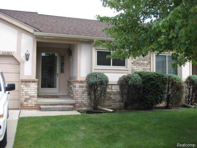 42382 Willow Tree Lane E, Clinton Twp, MI 48038 (#219101175) :: The Buckley Jolley Real Estate Team