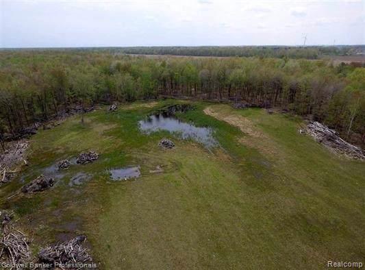 22000 Ederer, Lakefield Twp, MI 48637 (#219102031) :: The Buckley Jolley Real Estate Team