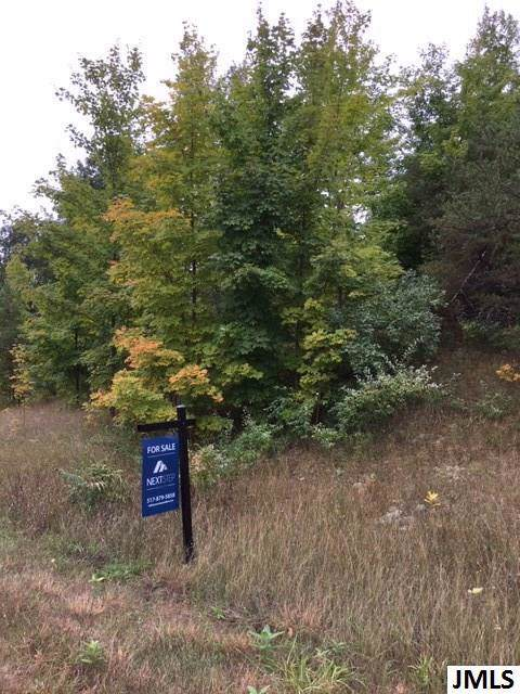 Lot 66 S Cherry Blossom Ln, Suttons Bay, MI 49682 (#55201903709) :: Alan Brown Group