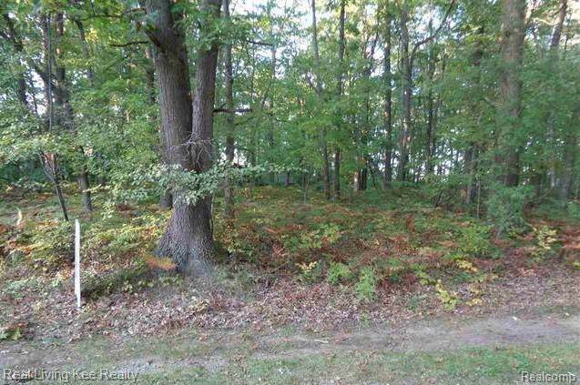 Lot 17 Mary Anne, Lake Twp, MI 48725 (#219107591) :: RE/MAX Nexus