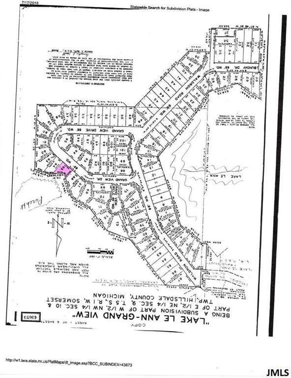Grandview, Somerset, MI 49249 (#55201903910) :: The Alex Nugent Team | Real Estate One