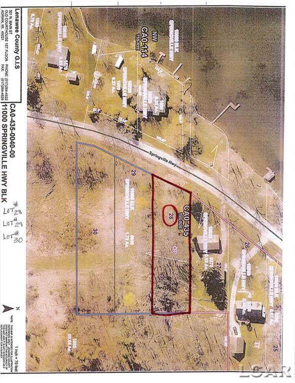 11000 Springville Hwy, Onsted, MI 49265 (#56031399158) :: GK Real Estate Team