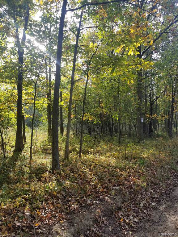 00 S Hellner Road, Northfield Twp, MI 48105 (MLS #219111585) :: The Toth Team