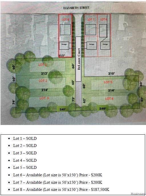737 Elizabeth St -2 Lots, Rochester, MI 48307 (#219112606) :: The Alex Nugent Team   Real Estate One