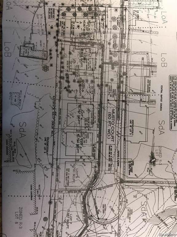 38822 Moravian Drive, Clinton Twp, MI 48036 (#219114558) :: The Buckley Jolley Real Estate Team