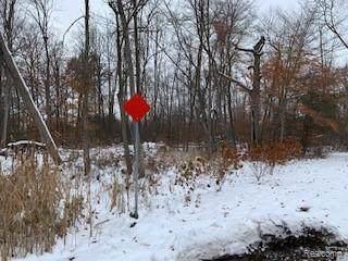 vacant lot Pine Creek Drive, Burton, MI 48519 (#219115242) :: The Buckley Jolley Real Estate Team