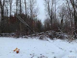 vacant lot Pine Creek Drive, Burton, MI 48519 (#219115248) :: The Buckley Jolley Real Estate Team