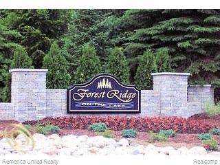 LOT 5 Oak Shore Drive, Green Oak Twp, MI 48178 (#219117175) :: The Merrie Johnson Team