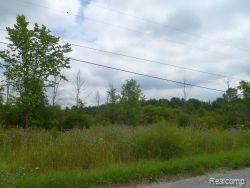0000 Klettner Road, ST. CLAIR TWP, MI 48079 (#219117705) :: Team DeYonker