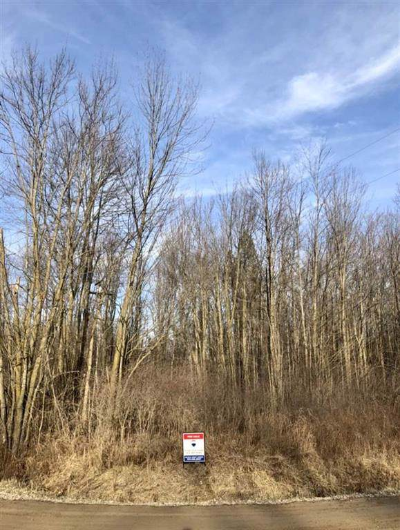 0 Blueberry Lane, Forest Twp, MI 48464 (#5050002447) :: Novak & Associates