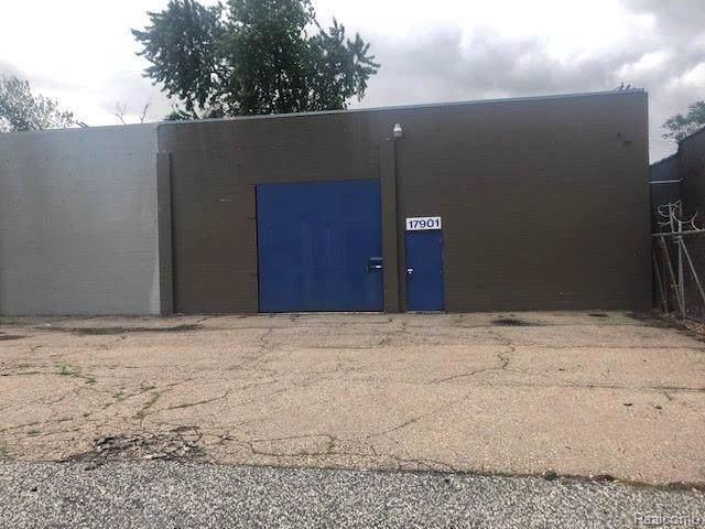 17901 Conant Street, Detroit, MI 48212 (#2200001830) :: Novak & Associates