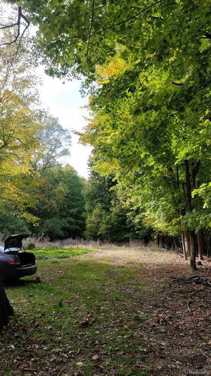 26635 Power Road, Farmington Hills, MI 48334 (#2200002905) :: The Buckley Jolley Real Estate Team