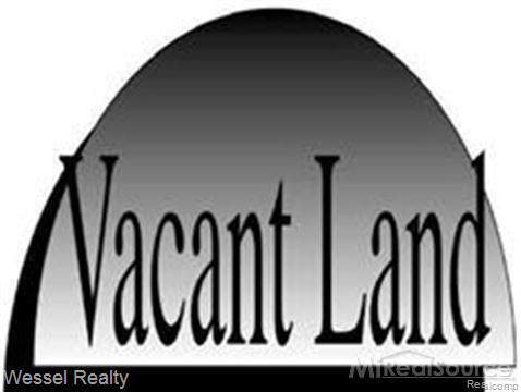 80111 Main Street, Memphis, MI 48041 (#2200003436) :: The Buckley Jolley Real Estate Team