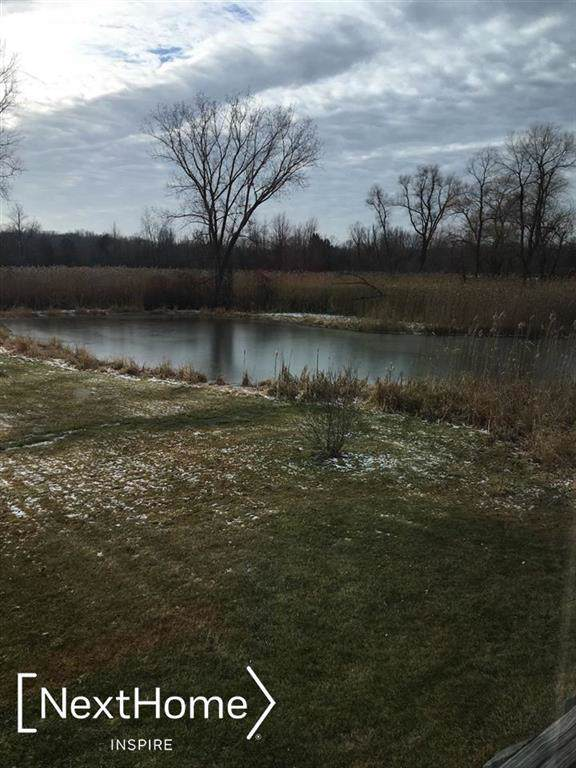 2030 Belford, Holly Twp, MI 48442 (#5050004337) :: The Mulvihill Group
